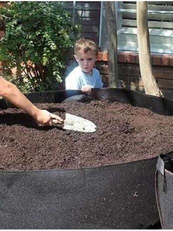 Planted Barrels